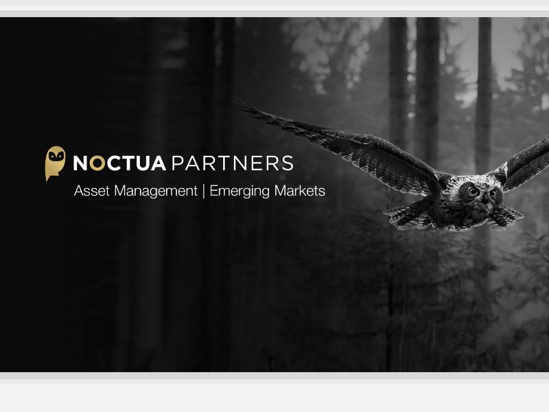 Noctua Partners