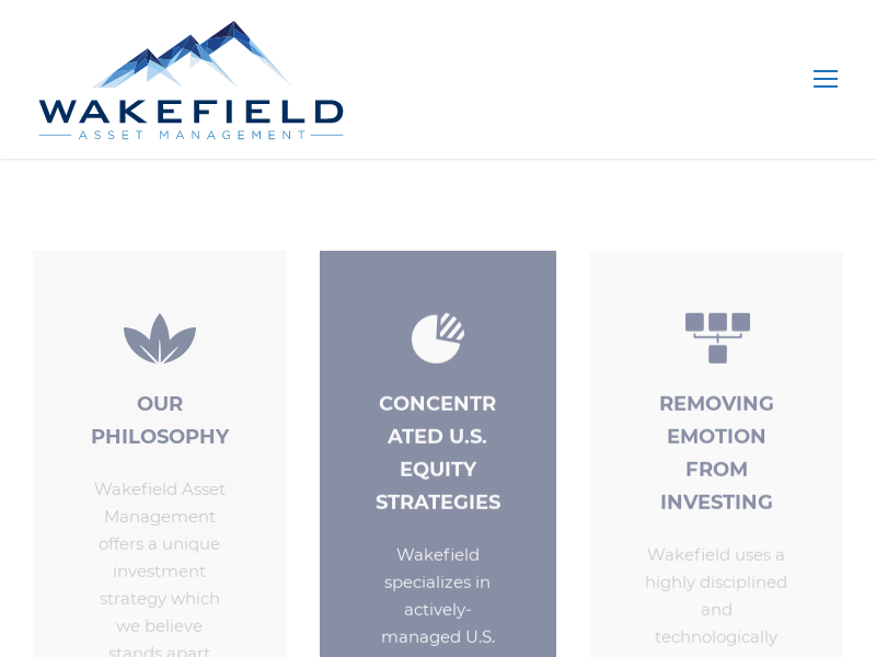 Powerful Investment Strategy | Wakefield Asset Management