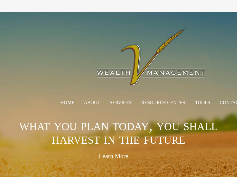 Home | V Wealth Management